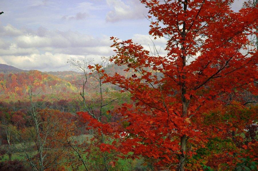 dawson_mountain-62